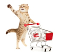 Cat with shopping cart