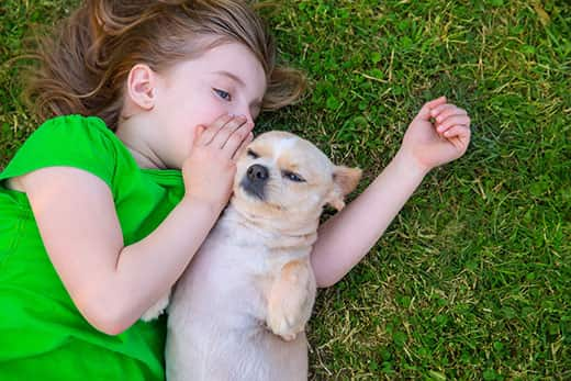 Little girl lying on her lawn with her small dog lying on his back next to her