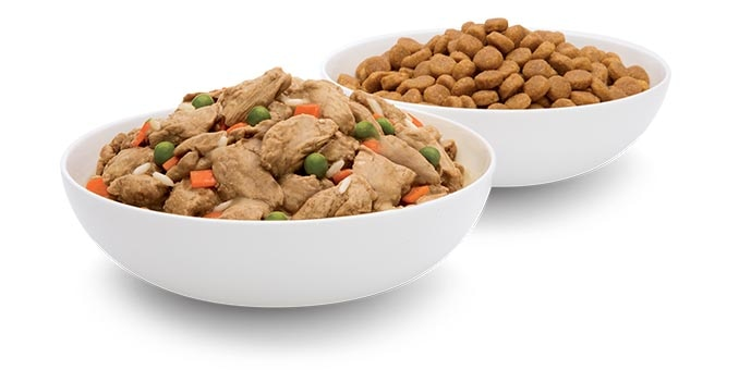 Bowls of dry and wet Hill's pet food.