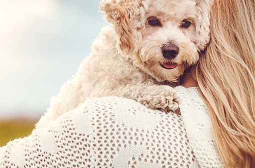 blond woman hugging white little dog
