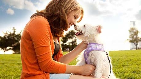woman sharing time with little white dog