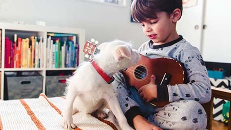 little boy playing ukulele for little dog