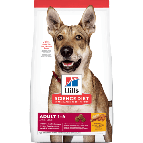 sd-canine-adult-dry